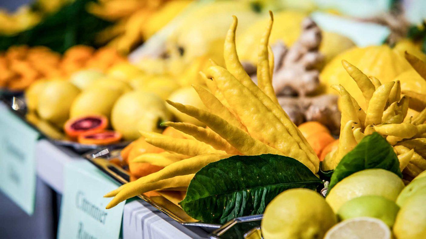 Valg av riktige råvarer er alfa omega. Her ser vi sitrusfrukten Budda´s hand, som også kalles fingersitron.