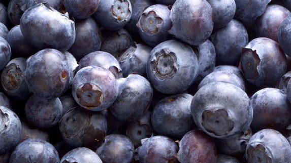 God tilstand på norske og importerte bær