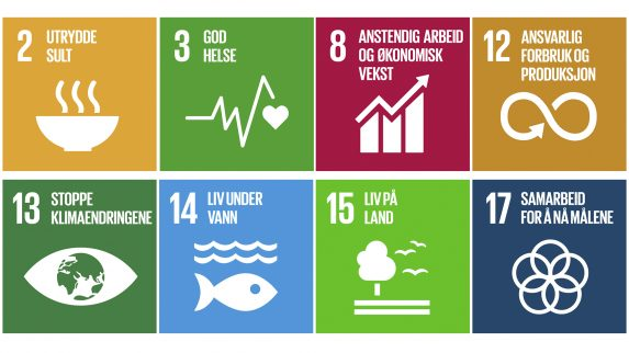 Søkelys på bærekraft som forretningsmodell