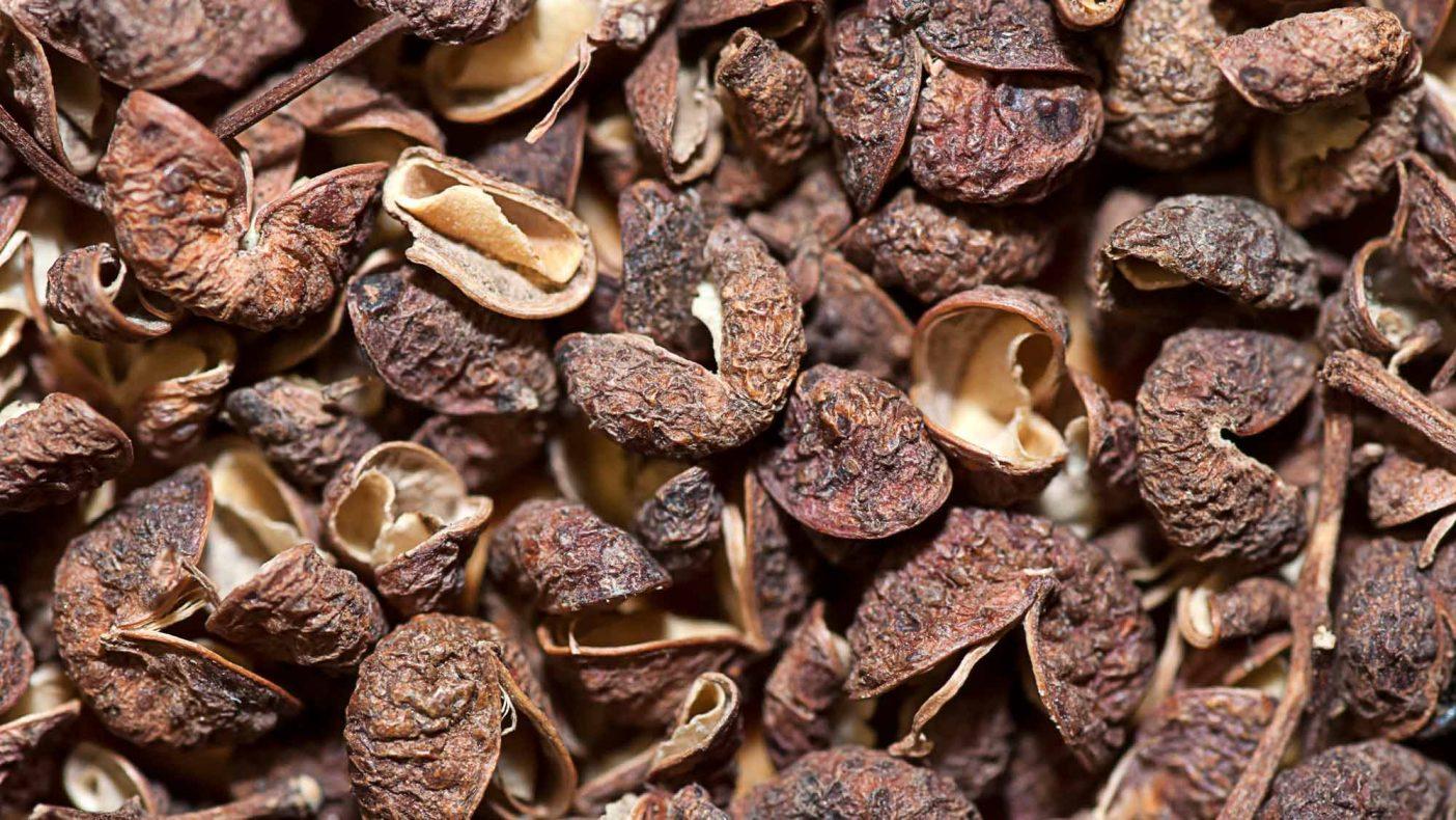 Nye peppertyper, som timutpepper, har begynt å få innpass i desserter og bakverk.