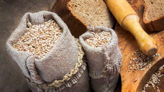 Satsing på matkorn og proteinvekster