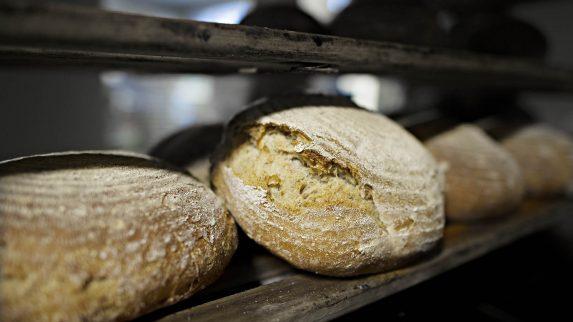 Det blir flere sertifiserte økologiske bakerier