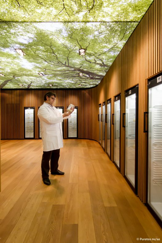 Karl De Smedt er ansvarlig for både innsamling og oppbevaring av surdeigene i surdeigsbiblioteket.
